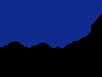 PKF Fasselt Schlange Logo
